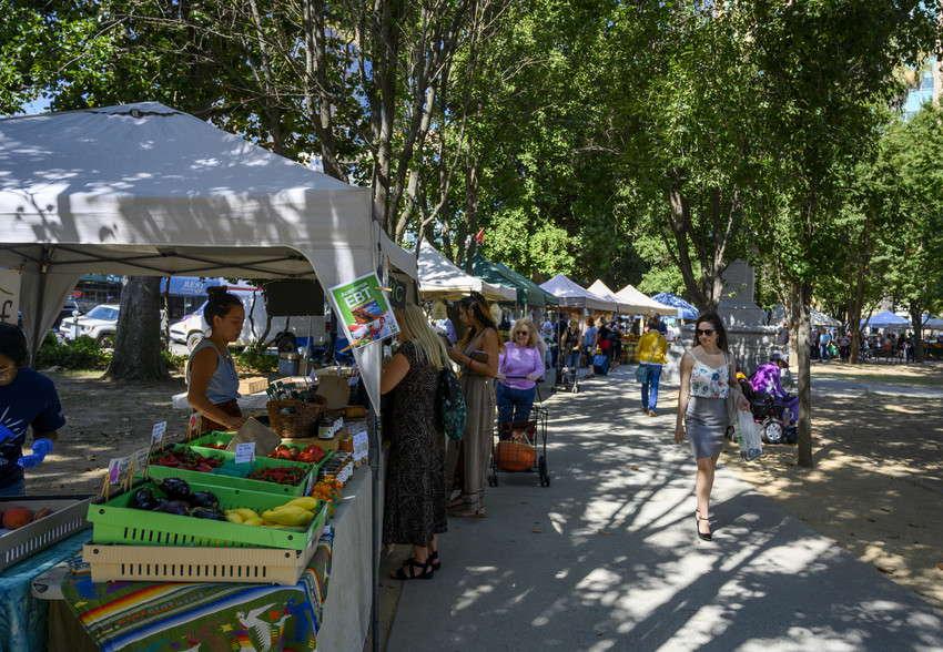 Annemarie_Meyer_-_Farmers_Market_Sacramento