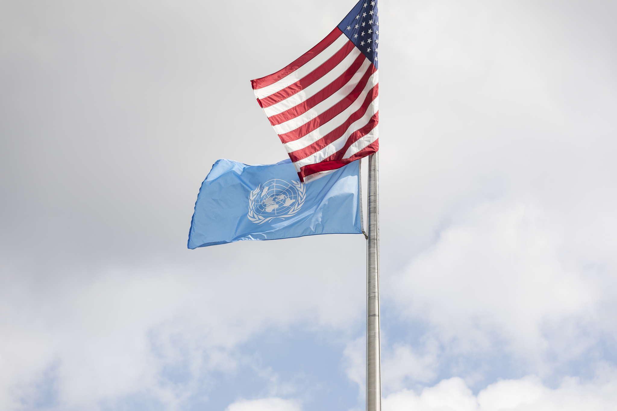 Laura_Linn_-_Values_5_Intl_UN_Flag_2020_mac_1562