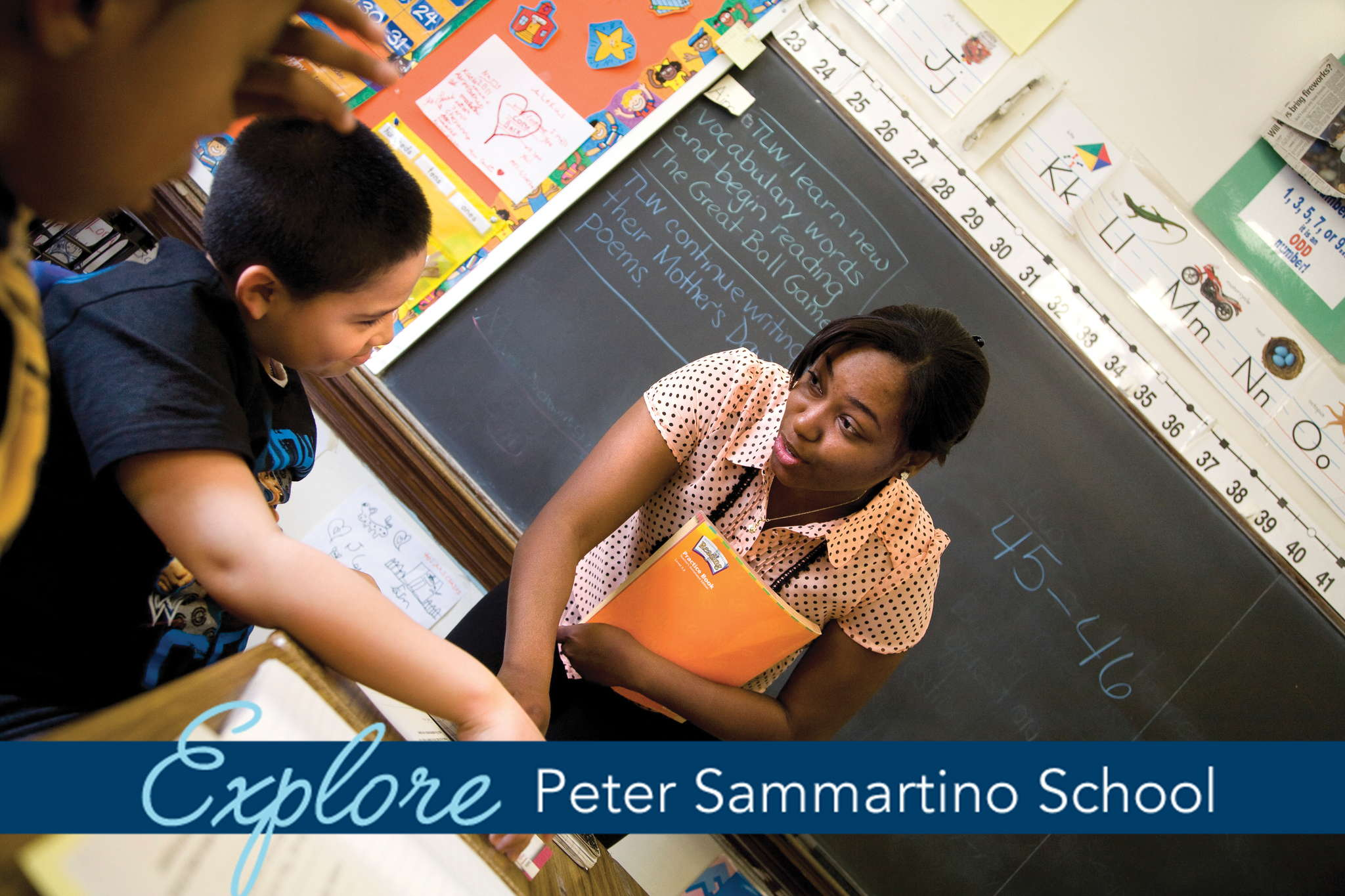 Sammartino_School_Education_banner