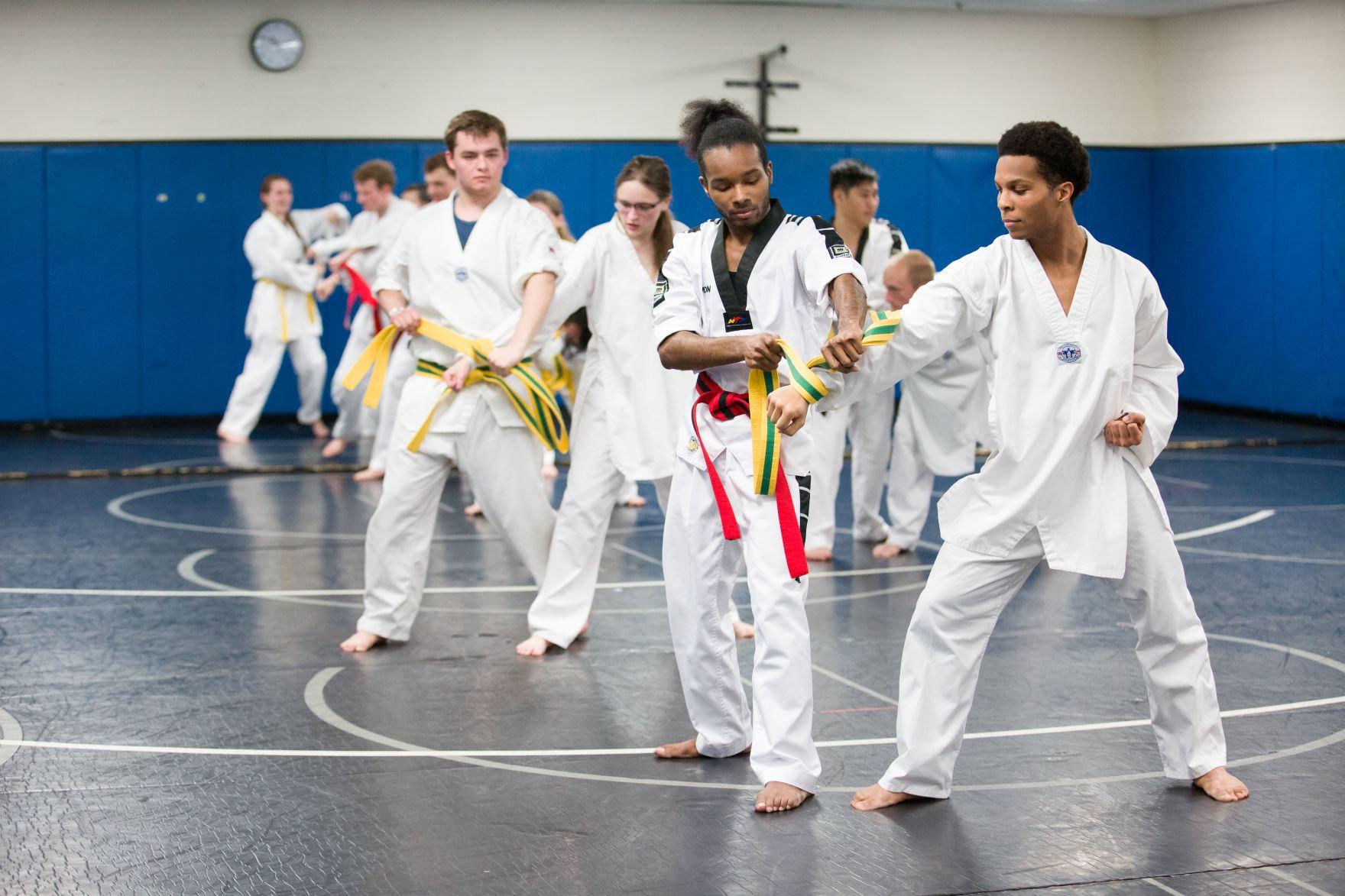Nick_Viau_-_170406_TaekwondoClub-0612